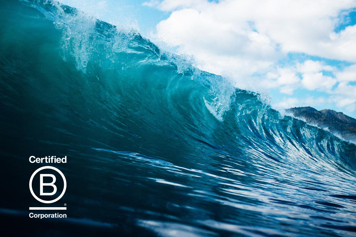B Corps and the wave of change